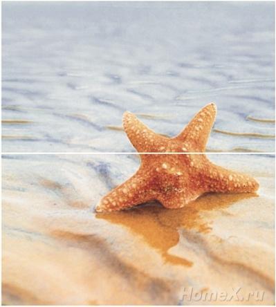 Декор Ceradim Starfish 1 50х45 (комплект)
