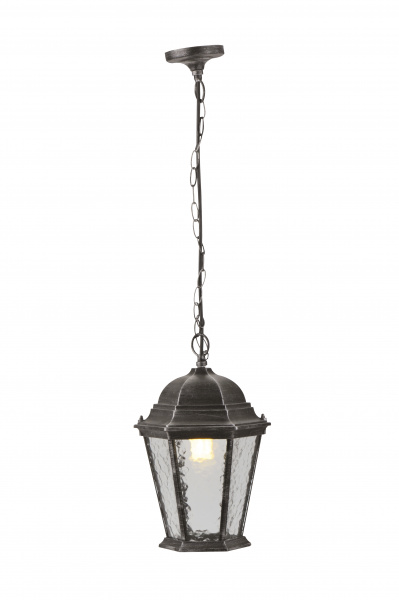Потолочный уличный светильник Arte Lamp Genova A1205SO-1BS